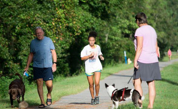 dog walker runner